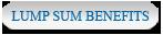 Lump Sum Benefit